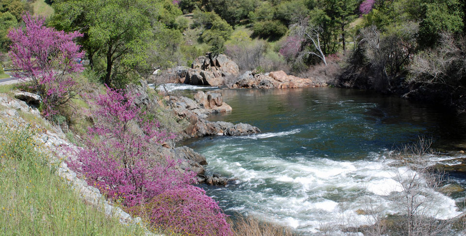 Photo of Merced River, downsteam from Yosemite, CA
