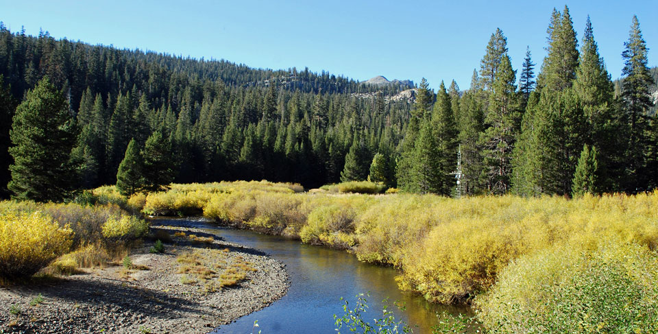Photo of San Joaquin River near Devil's Postpile
